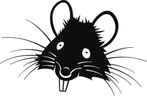 Cartoon face of Smart Rat. Or Dumb Rat. Either one.