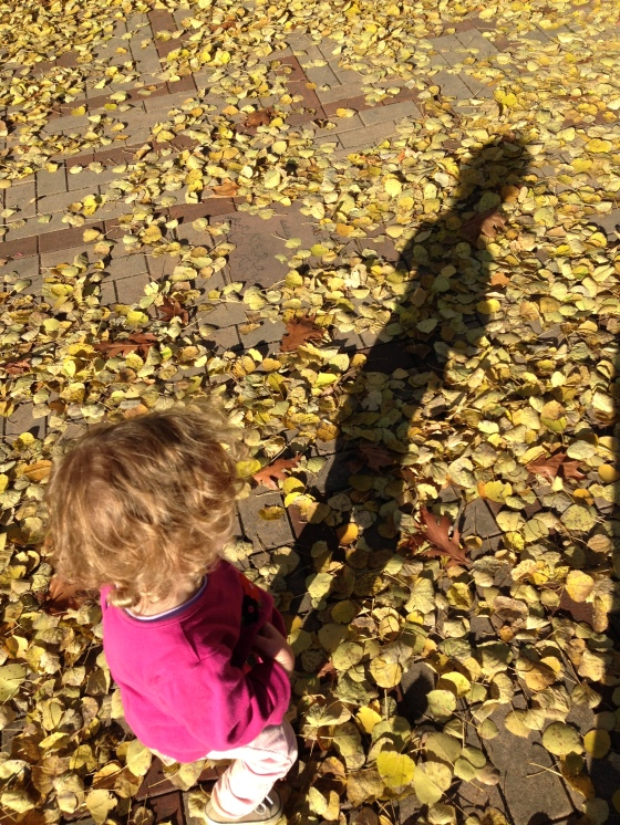 [Image: Overhead shot of Fiona walking along fallen gold leaves. Her shadow is long and lean against the ground.]